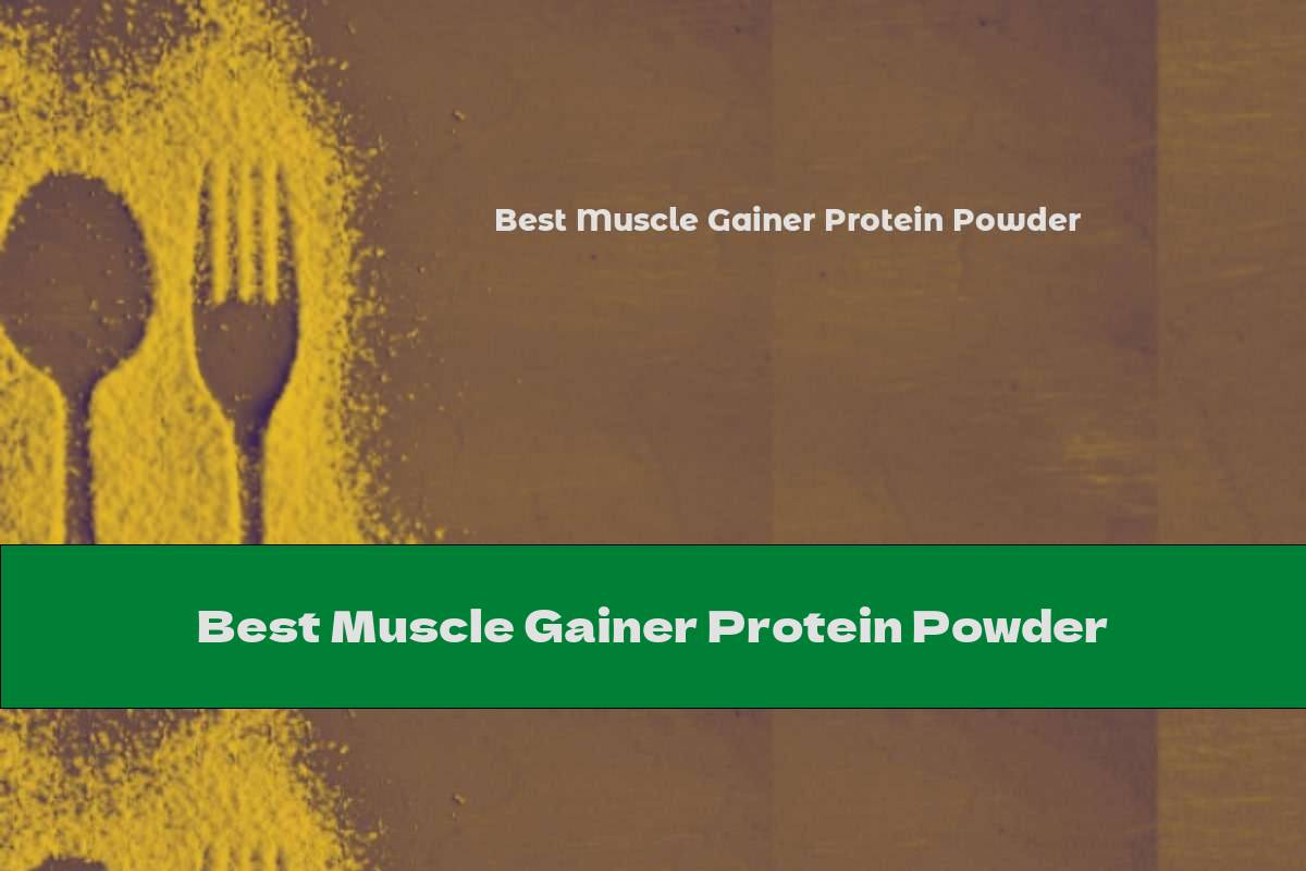 Best Muscle Gainer Protein Powder