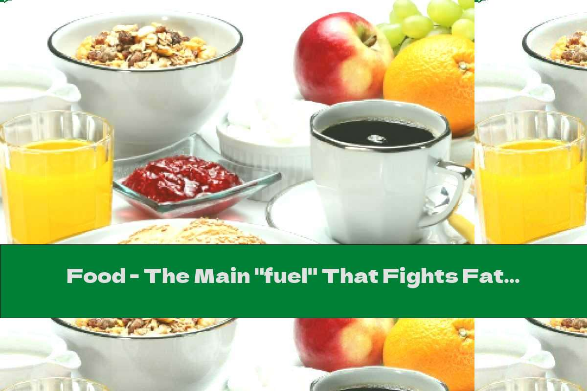 """Food - The Main """"fuel"""" That Fights Fatigue"""