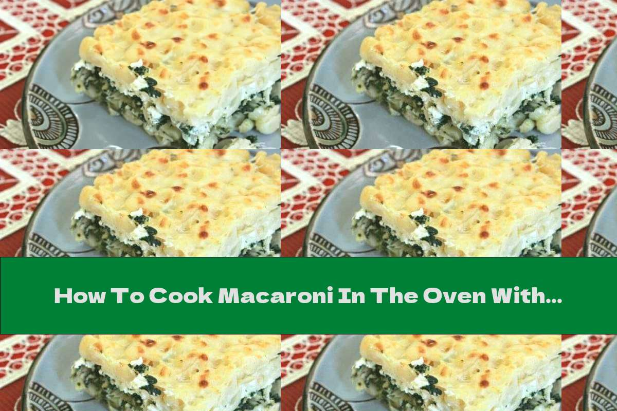 How To Cook Macaroni In The Oven With Dock, Cheese And Chicken - Recipe