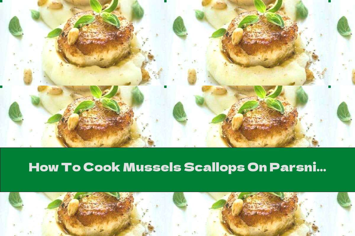 How To Cook Mussels Scallops On Parsnip Puree - Recipe
