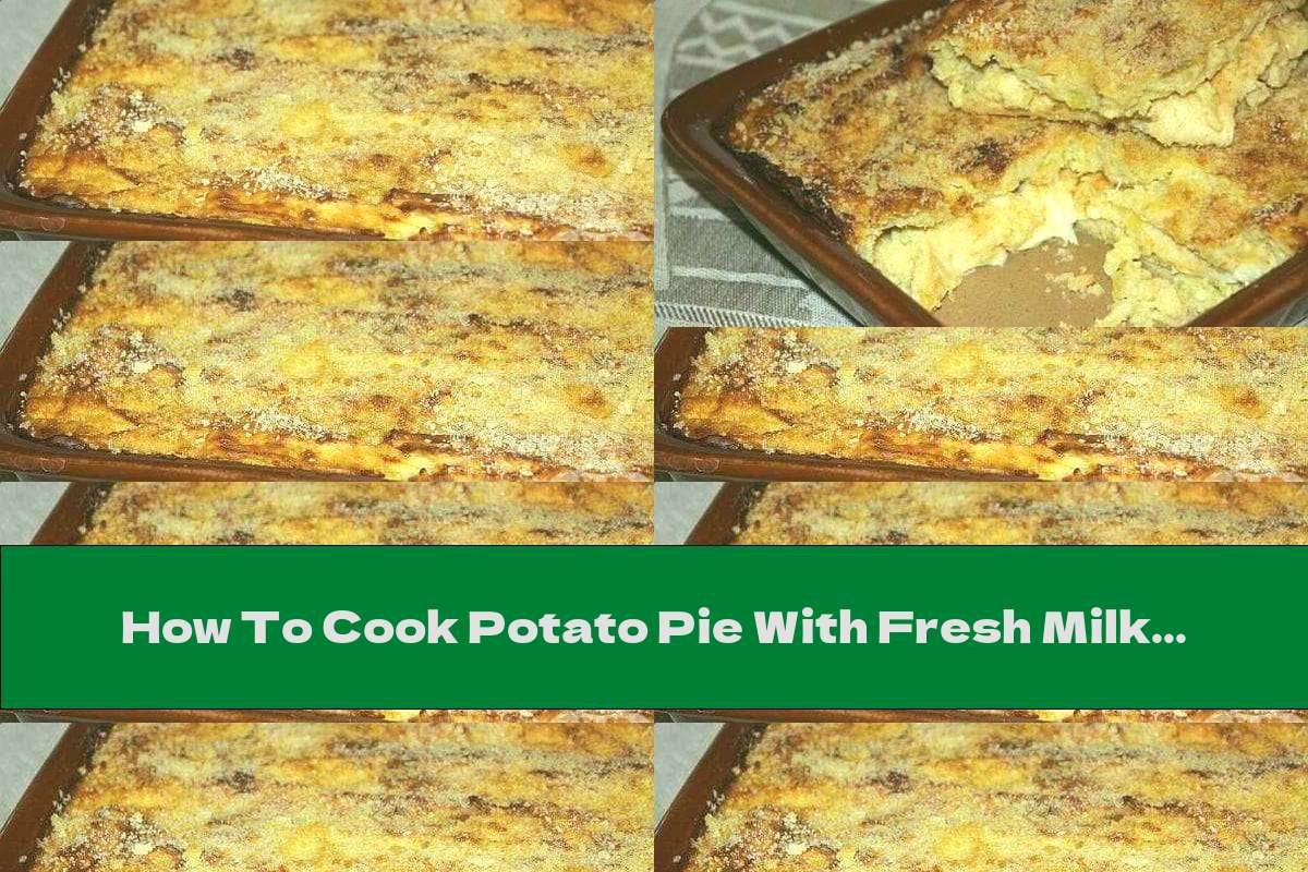 How To Cook Potato Pie With Fresh Milk, Parmesan And Mozzarella - Recipe