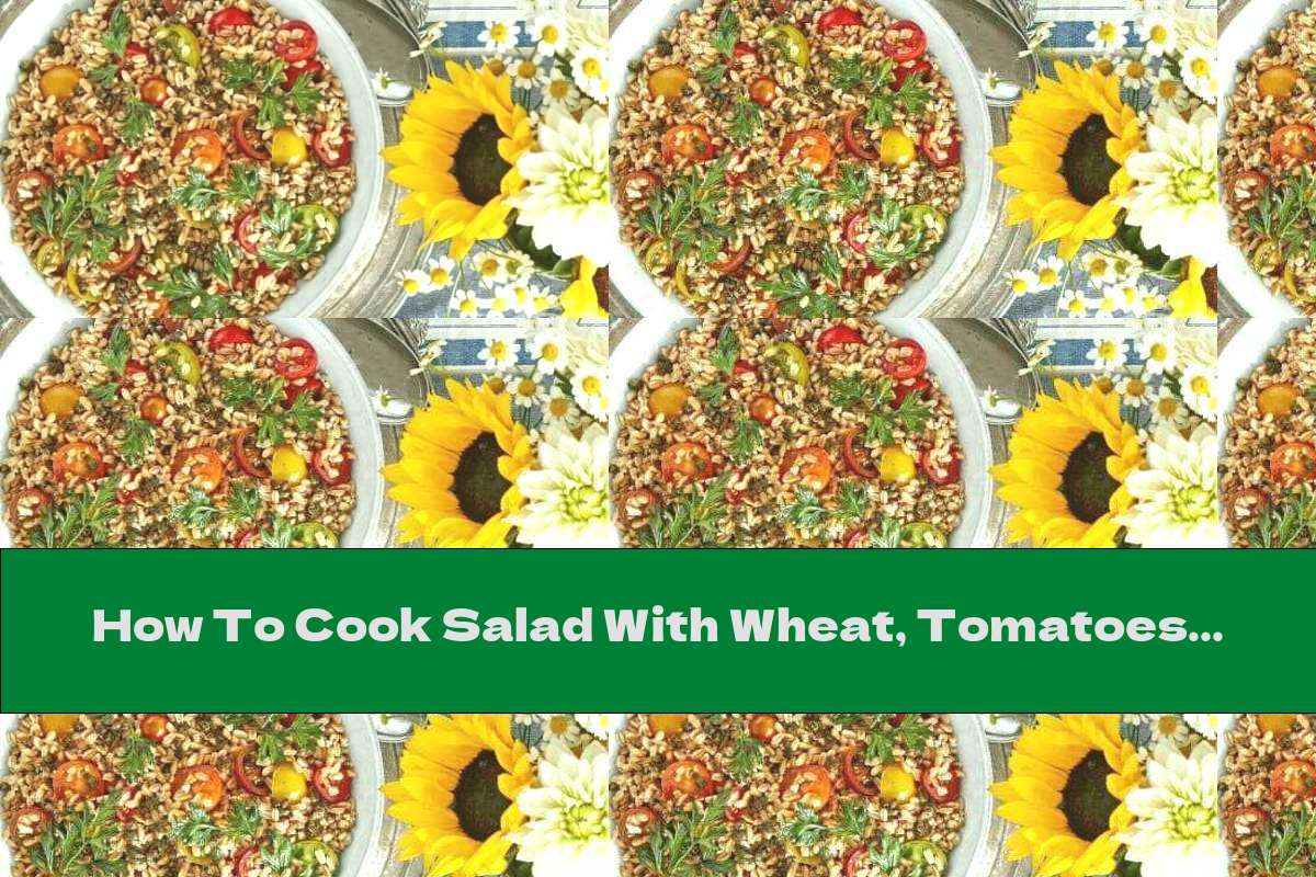 How To Cook Salad With Wheat, Tomatoes And Parsley Chips - Recipe