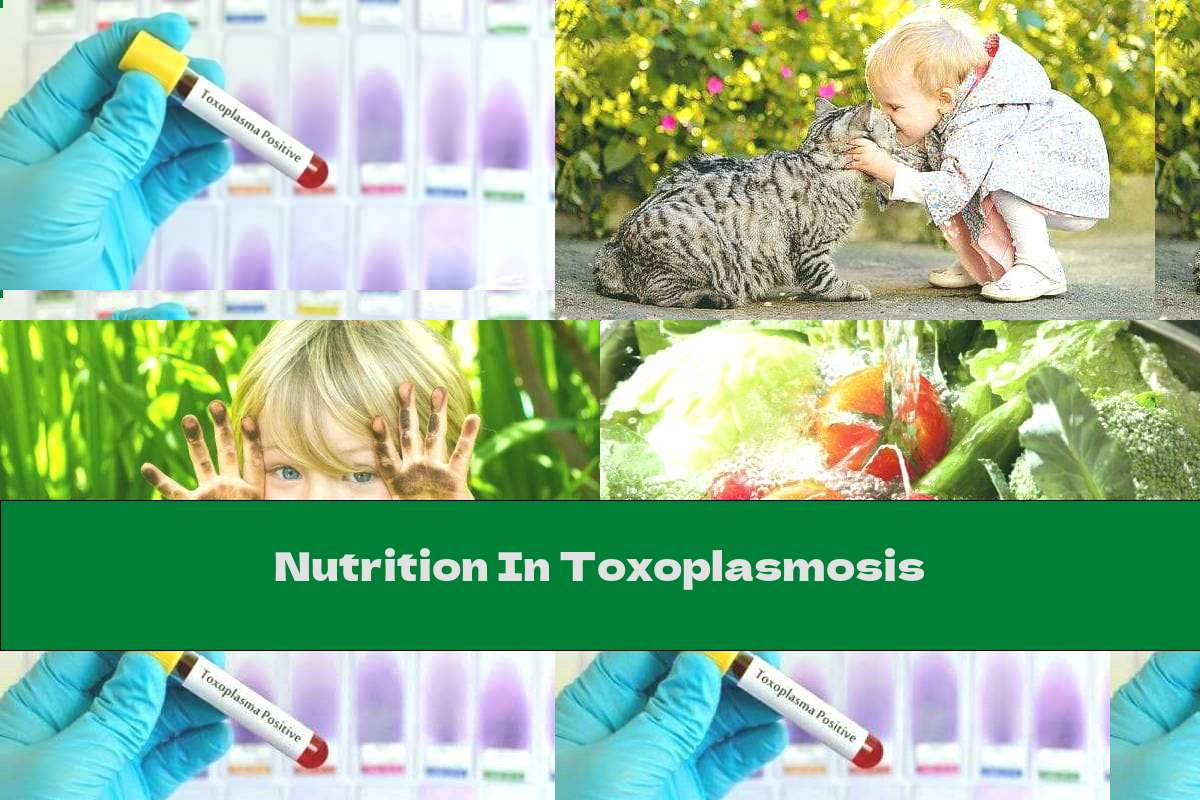 Nutrition In Toxoplasmosis