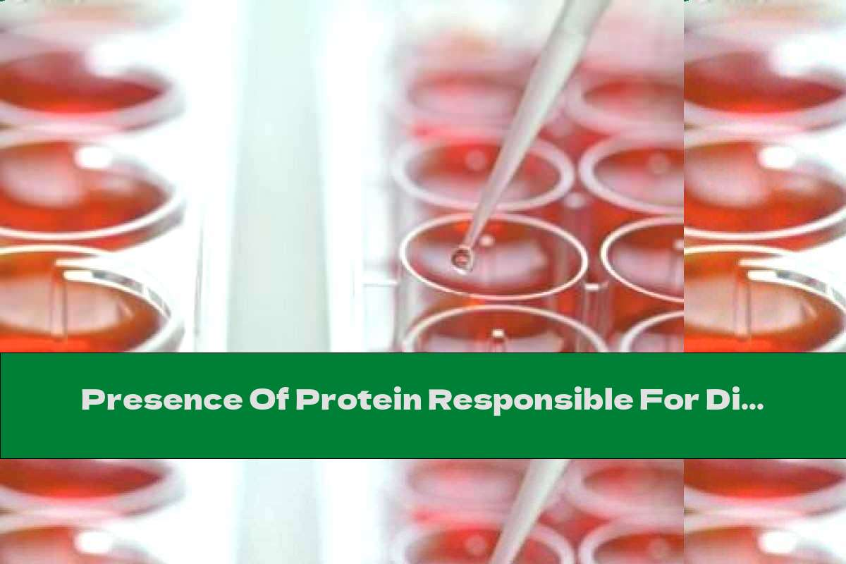 Presence Of Protein Responsible For Diabetes
