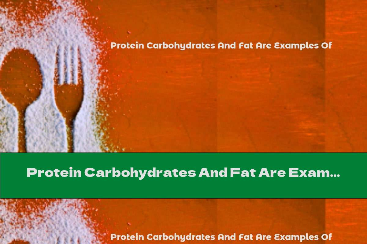 Protein Carbohydrates And Fat Are Examples Of
