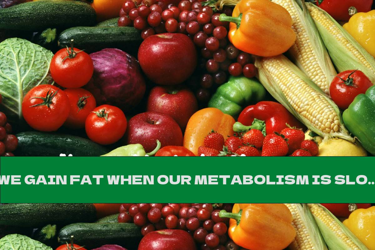 WE GAIN FAT WHEN OUR METABOLISM IS SLOWED DOWN (30+ FOODS THAT REGULATE THE METABOLISM)