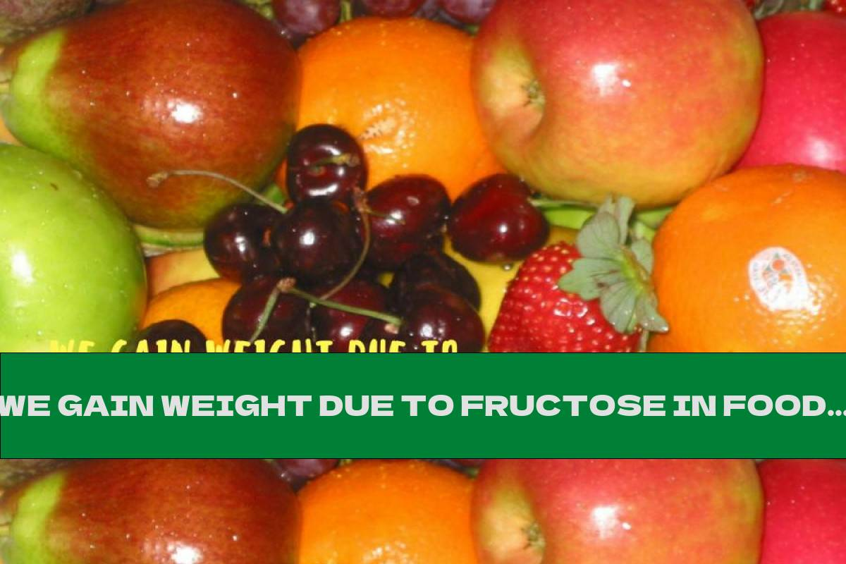 WE GAIN WEIGHT DUE TO FRUCTOSE IN FOODS